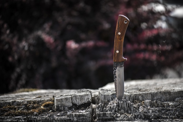 Lon Humphrey Custom Scout Knife